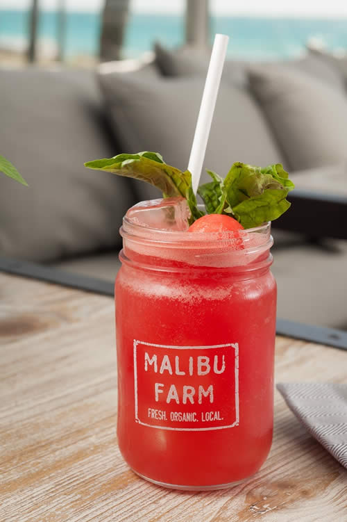 Malibu Farm - Eden Roc Resort Miami Beach - Beach - Miami Beach