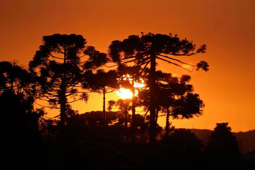 Pôr do Sol - São Francisco de Paula - Serra Gaucha